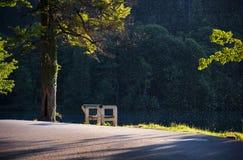 Afgetapt Meer Nationaal Park Slovenië Royalty-vrije Stock Fotografie