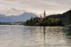 Afgetapt meereiland, Slovenië Stock Fotografie