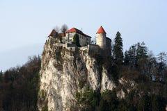 Afgetapt, Slovenië Stock Fotografie