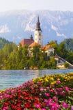 Afgetapt, Slovenië Eiland in het midden van het meer met kerk Royalty-vrije Stock Foto