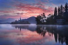 Afgetapt in Slovenië, Europa Royalty-vrije Stock Fotografie