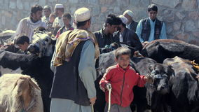 Afghan farmers waiting Stock Images