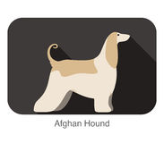 Afghan Hound dog breed flat icon design Royalty Free Stock Photography
