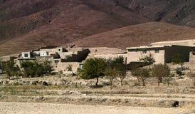 afghan liggande Royaltyfri Foto
