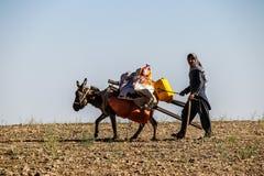 Afghanistan-Dorfältestes, das seine Parzelle bearbeitet stockfotografie