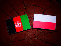 Afghanistan flag with Polish flag on a tree stump isolated. Afghanistan flag with Polish flag on a tree stump royalty free illustration