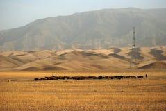 afghanistan północ America Zdjęcie Stock