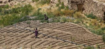 Free Afghanistan Villagers Working Their Plot Of Landctll Of The School Stock Photo - 127878880