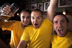 Aficionados desportivos no bar Imagens de Stock Royalty Free