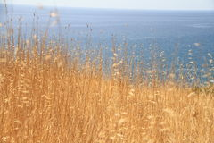 afield seascape meganom karadag плащи-накидк старый vulcan Стоковое фото RF