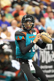 AFL: APR 02 Orlando Predators at Arizona Rattlers. PHOENIX, AZ - APRIL 2: Arizona Rattlers QB Nick Davila (10) drops back to pass during Arena Football League Stock Photos