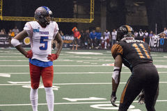 AFL Arizona Rattlers defensive back Arkeith Brown. AFL Arizona Rattlers Arkeith Brown. The Rattlers won their third consecutive ArenaBowl Championship Royalty Free Stock Photos