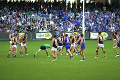 AFL football. Australian rules football, Western bulldogs versus Richmond tigers, played on the April 20 2008 game ends in draw. Umpire about to bounce ball Stock Image