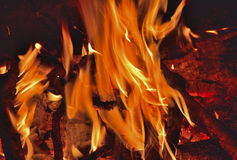 Aflame wood 14 Stock Photography