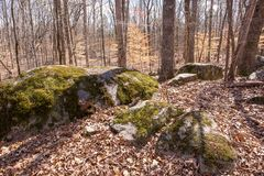 Afloramento de Boulder do granito com musgo Fotografia de Stock