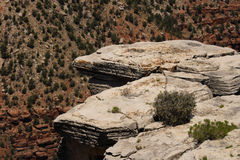Afloramento de rocha Foto de Stock Royalty Free