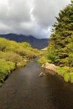 Afon Denau, Ogwen dal Royaltyfri Fotografi