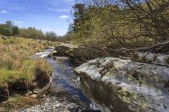 Afon Disgynfa a small stream Royalty Free Stock Photos