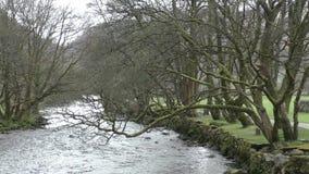 Afon Glaslyn en Beddgelert País de Gales almacen de video