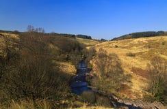 Afon Llia谷的树木丛生的山 免版税图库摄影
