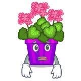 Afraid geranium flowers in the cartoon pot. Vector illustration vector illustration