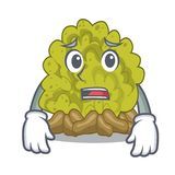Afraid green coral reef isolated with cartoon. Vector illustration stock illustration