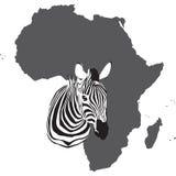 africa Zdjęcie Stock