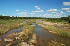 Africa. River flowing thouugh the jungle in Africa Royalty Free Stock Photo