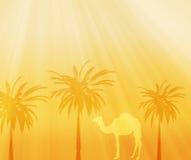 Africa background. Background of Africa safari landscape Stock Photos