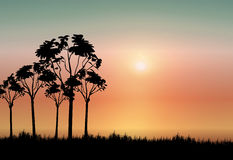Africa Background. Landscape silhouette of africa with setting sun Royalty Free Stock Photography