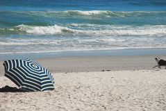 Africa- Beach, Striped Umbrella With Running Dog stock photography