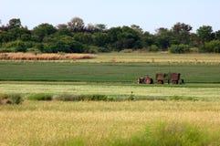 africa bonde Arkivfoto