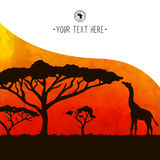 Africa card acacia tree and giraffe silhouette Stock Images