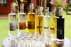 Africa,Chamarel distillery in Mauritius Island Stock Image