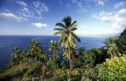 AFRICA COMOROS ANJOUAN. The landscape on the coast of the village Moya on the Island of Anjouan on the Comoros Ilands in the Indian Ocean in Africa Royalty Free Stock Images