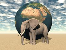 Africa and earth and elephant Stock Images