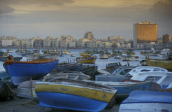 AFRICA EGYPT ALEXANDRIA CITY Royalty Free Stock Image