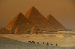 AFRICA EGYPT CAIRO GIZA PYRAMIDS Stock Image