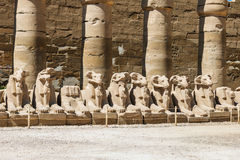 Africa, Egypt, Luxor, Karnak temple Stock Images