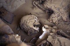 AFRICA EGYPT SAHARA FARAFRA WHITE DESERT Stock Photography