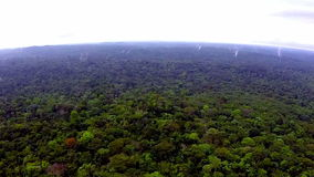 Africa. Equatorial Guinea jungle. View from the bird's-eye view stock video footage