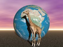 Africa and giraffe Stock Images