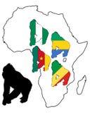 Africa Gorilla Royalty Free Stock Photo