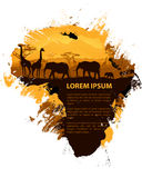 Africa grungy design template. African travel design template. Animal, tree and continent silhouettes Royalty Free Stock Photography