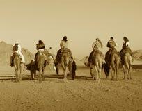 Free Africa In Sephia Stock Images - 444024