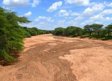 Africa, Kenya. Dry riverbed. Landscape nature. Royalty Free Stock Images