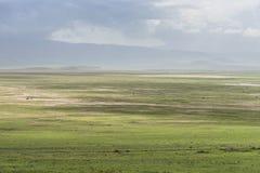 africa krateru ngorongoro Tanzania Zdjęcie Royalty Free
