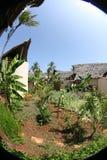 africa kurort klasowy wysoki Fotografia Royalty Free