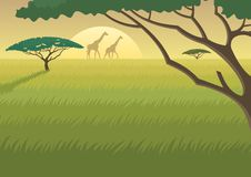 Africa Landscape. Landscape of the African Savannah at dusk/dawn Royalty Free Stock Photography
