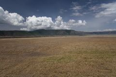 Africa landscape. In Ngorongoro park Stock Photo